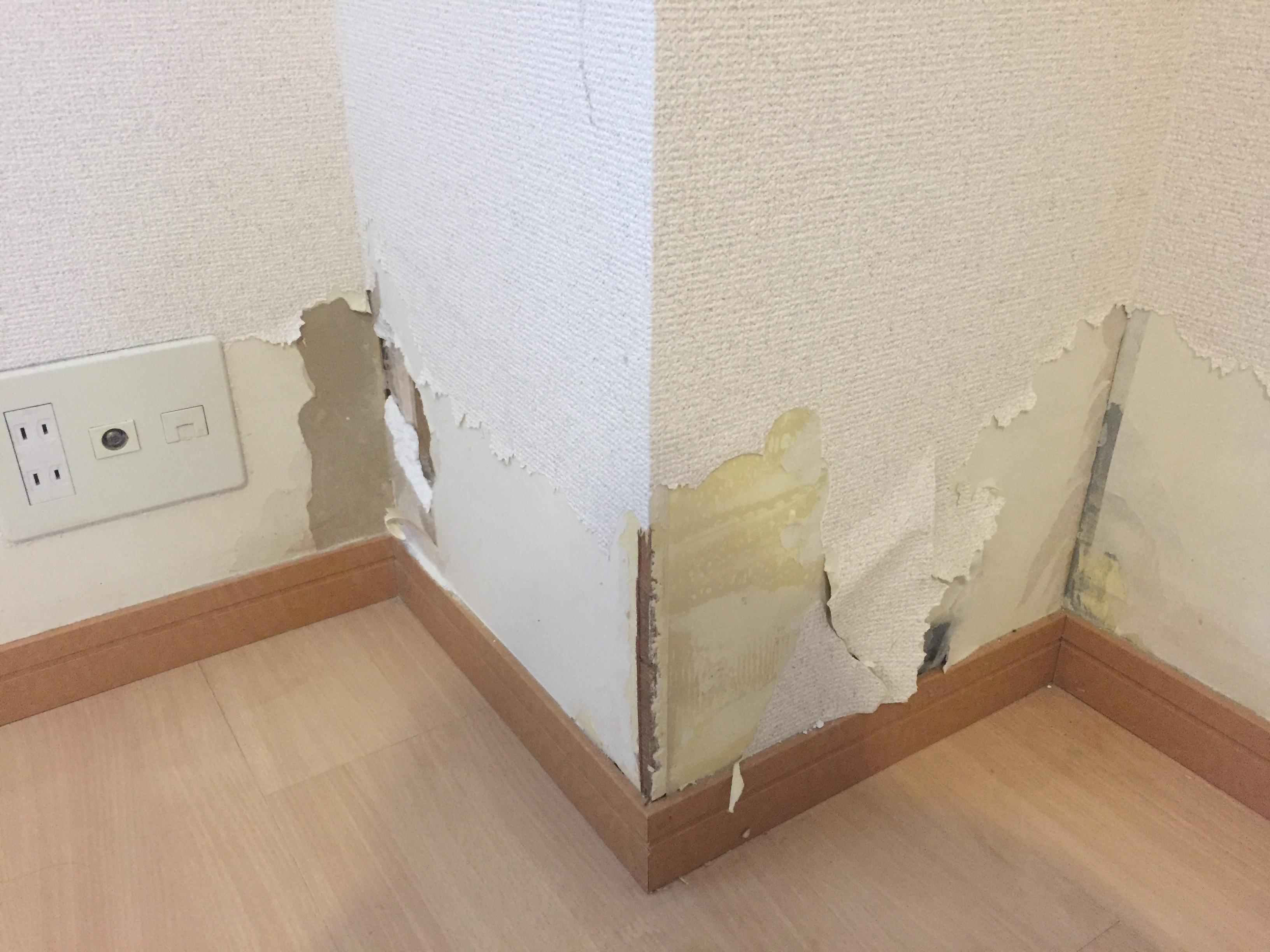 ネズミ 壁穴 補修