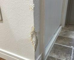 賃貸アパートペット壁補修